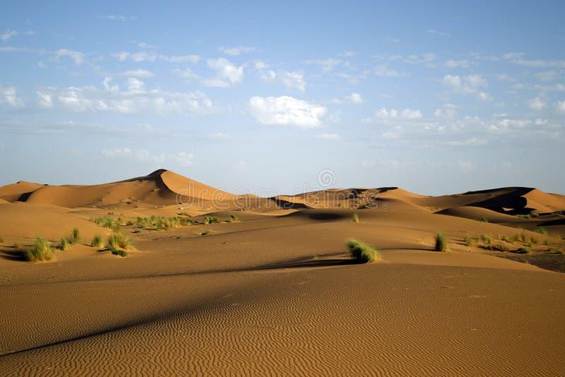 Dunas del desierto de Sáhara foto de archivo