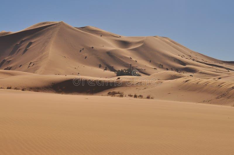 Dunas del desierto de Sáhara foto de archivo libre de regalías
