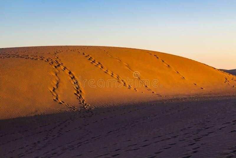 Dunas del desierto iluminadas por la luz del sol fotos de archivo