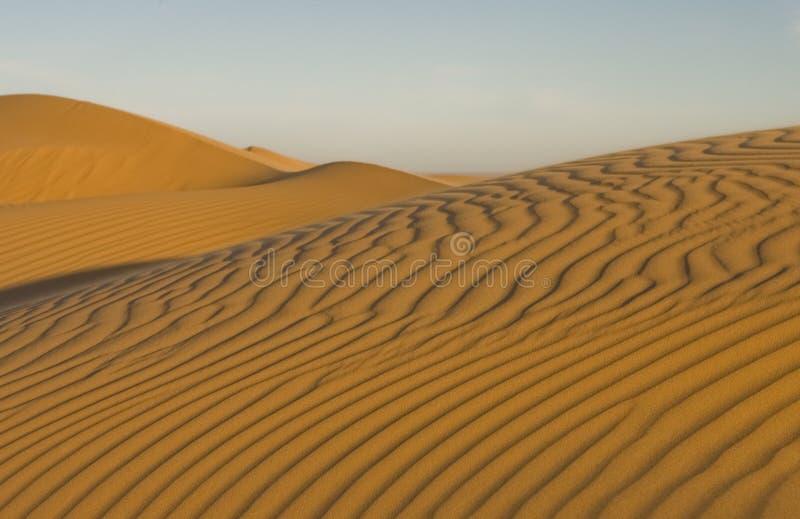 Dunas del EL Pinacate en el desierto de Sonoran imagen de archivo libre de regalías