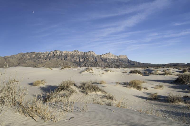 Dunas del lavabo de la sal en Guadalupe Mountains National Park foto de archivo libre de regalías