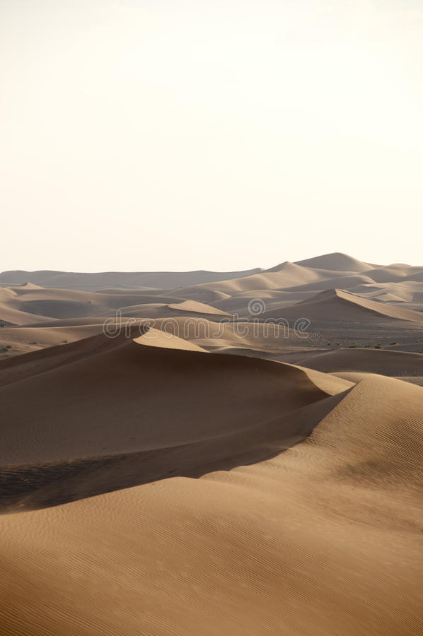 Dunas do deserto fotografia de stock