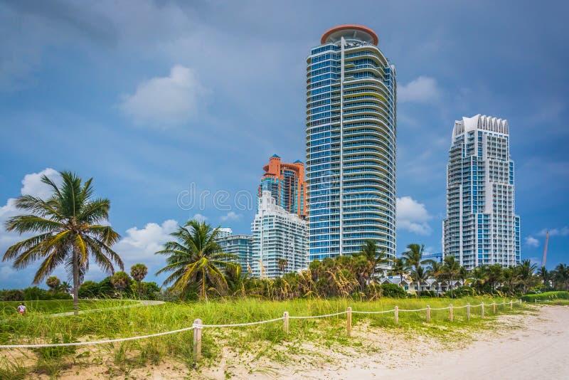 Dunas e arranha-céus de areia em Miami Beach, Florida fotos de stock royalty free