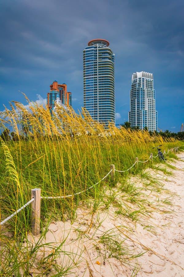 Dunas e arranha-céus de areia em Miami Beach, Florida imagens de stock royalty free