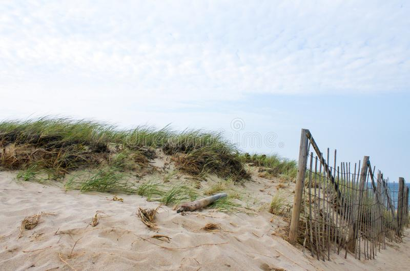 Dunas e hierba del mar y una cerca de bambú de la barricada para controlar la deriva de la arena en Cape Cod foto de archivo libre de regalías