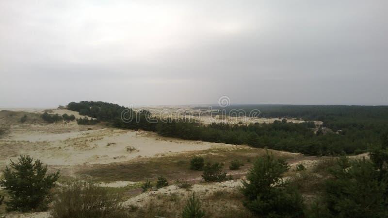 Dunas en el escupitajo de Curonian imagen de archivo