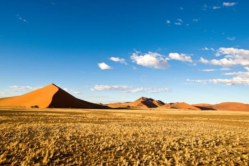 Dunas en Sossusvlei, Namibia fotos de archivo libres de regalías