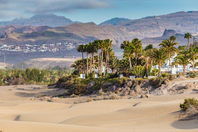 Dunas-Gran Canaria de Maspalomas, Ilhas Canárias, Espanha foto de stock royalty free