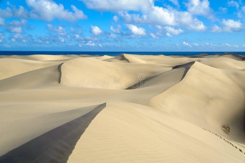 Dunas. The great desert Dunas de Maspalomas in Gran Canary royalty free stock photos