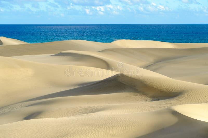 Dunas. The great desert Dunas de Maspalomas in Gran Canary royalty free stock image