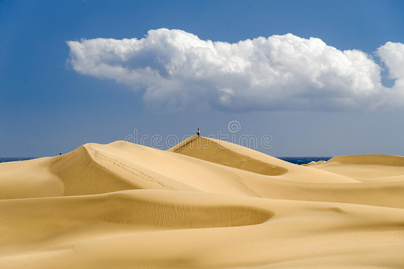 Dunas. The great desert Dunas de Maspalomas in Gran Canary royalty free stock photo