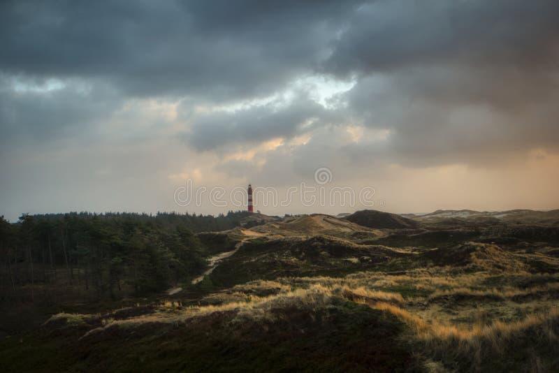 Dunas na ilha norte Amrum do Frisian fotos de stock royalty free