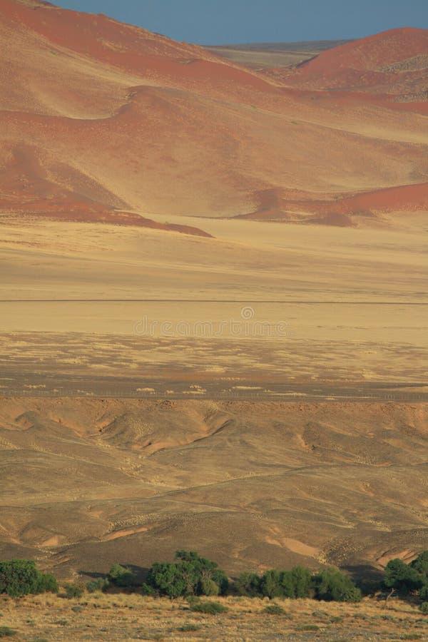 Dunas namibianas del paisaje del desierto imagen de archivo libre de regalías