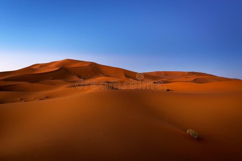 Dunas no alvorecer no ERG Chebbi perto de Merzouga em Marrocos foto de stock royalty free