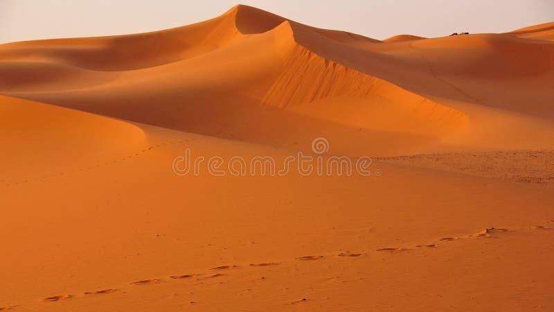 Dunas no deserto de Marrocos imagens de stock