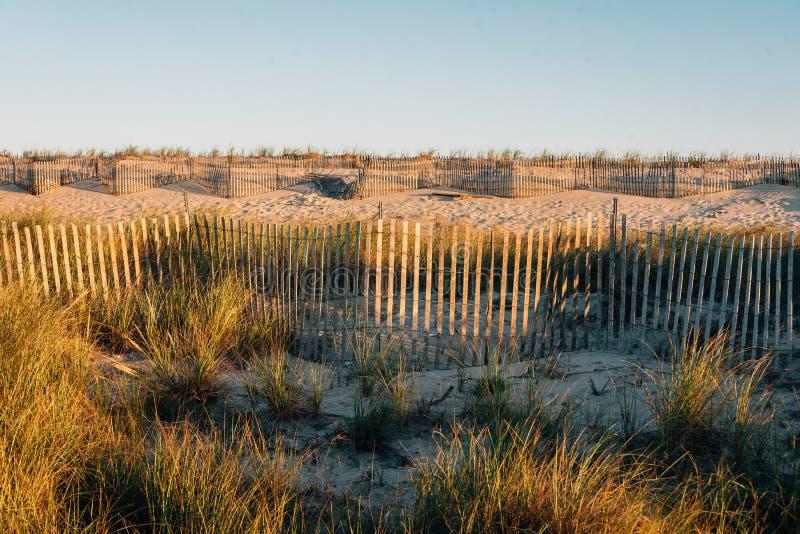 Dunas y cercas de arena en la costa nacional de la isla del fuego, Nueva York foto de archivo libre de regalías