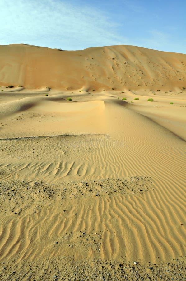 Dunas y ondulaciones de arena de Liwa fotografía de archivo
