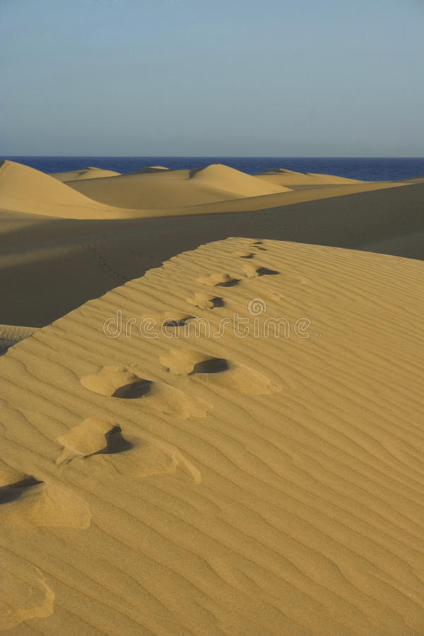 Free Dunas2 Royalty Free Stock Images - 10666779