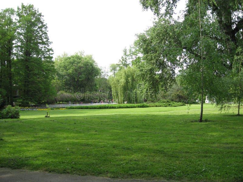 Dunavski park, Cental park, Picnic place, Novi Sad, Vojvodina, Serbia. Dunavski park is bib park in Novi Sad, capital of the northerm Serbian province of stock photography