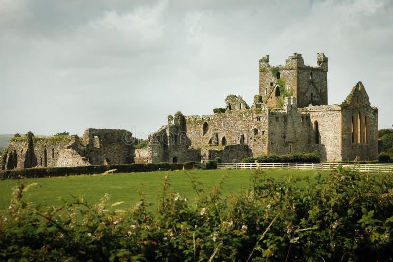 dunbrody abbey ståndsmässiga Wexford ireland royaltyfria bilder