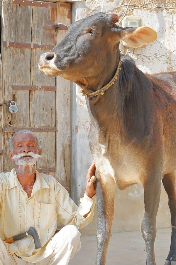 DUNDLOD, RAJASTHAN, ÍNDIA - 27 DE DEZEMBRO DE 2017: Retrato de um ancião com um bigode longo e do levantamento com sua vaca imagens de stock