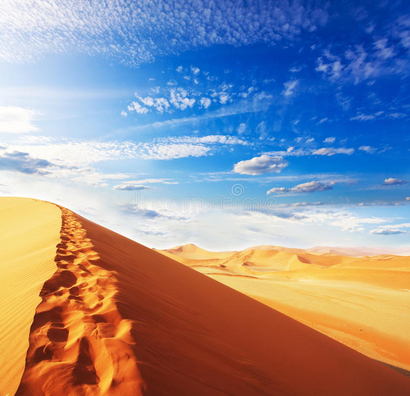 Dune royalty free stock photo