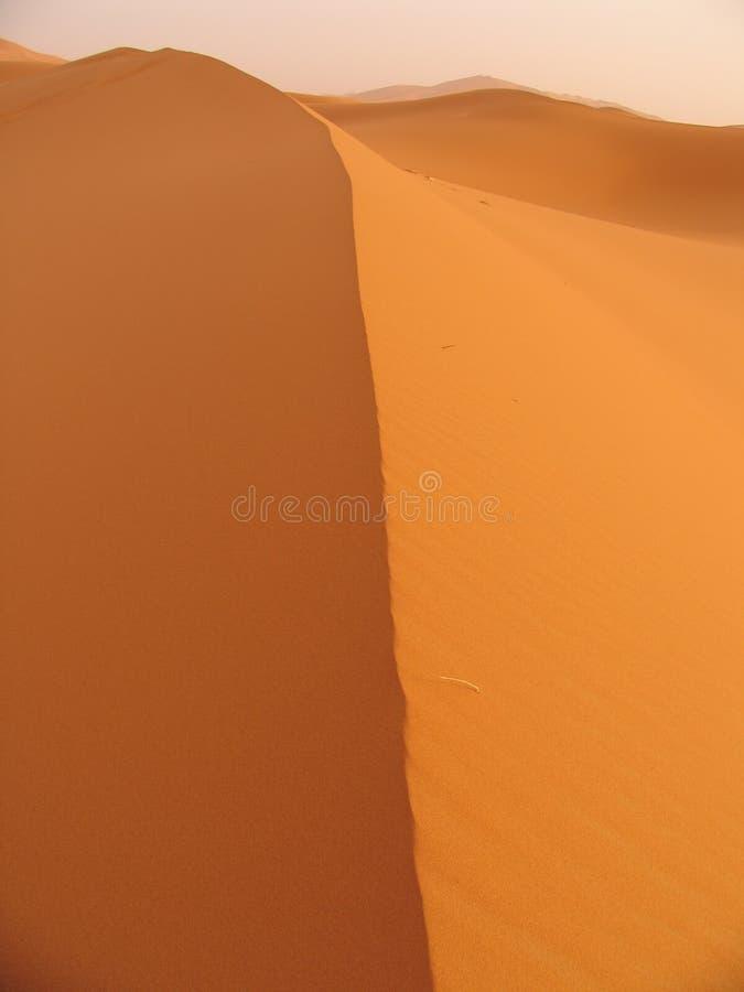 Free Dune Royalty Free Stock Image - 182496