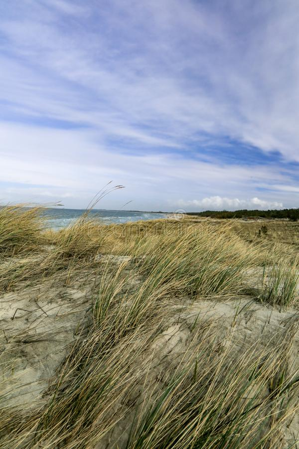 Dune at the Baltic Sea, Grass sand dune beach sea view. With clouds stock photo