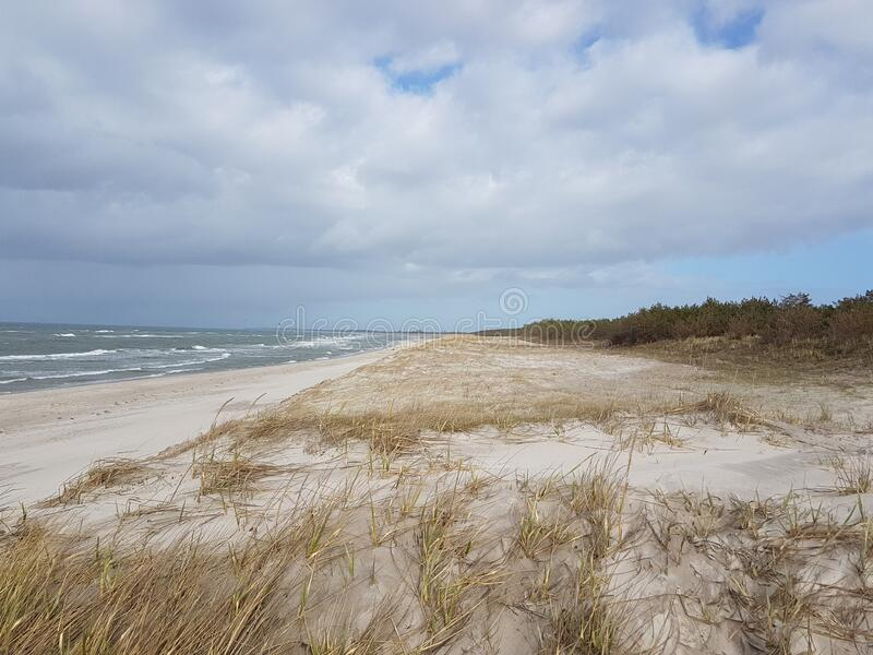 Dune at the Baltic Sea, Grass sand dune beach sea view. With clouds royalty free stock images