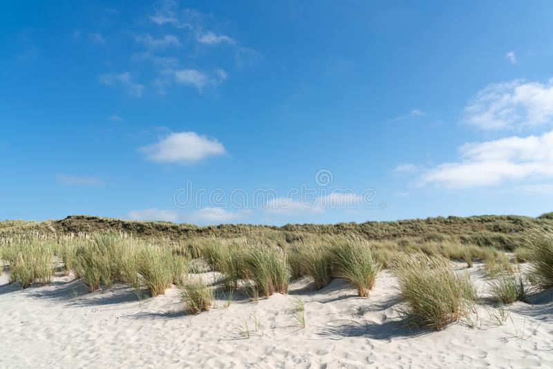 Lighthouse red white on dune. Sylt island – North Germany. Lighthouse red white on dune vertical. Focus on background with lighthouse royalty free stock images