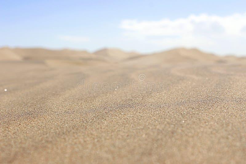 Dune dans le d?sert de namib Afrique images libres de droits