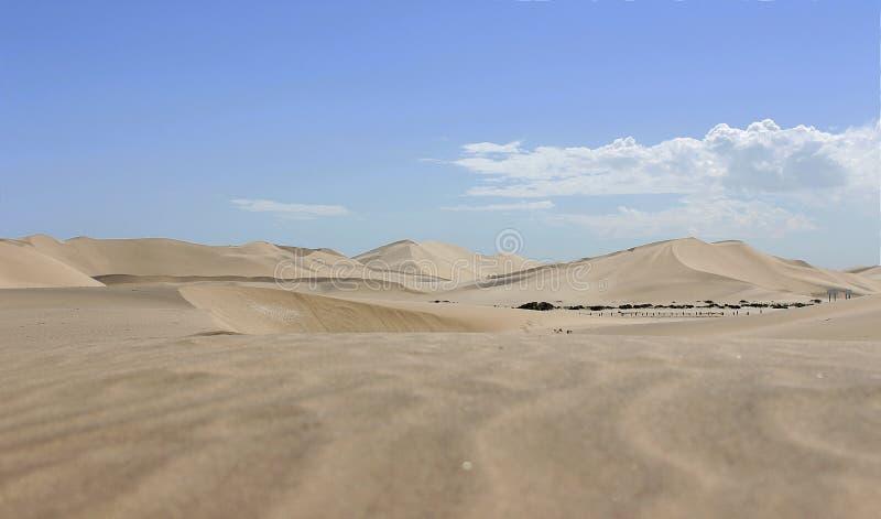 Dune dans le d?sert de namib Afrique image libre de droits