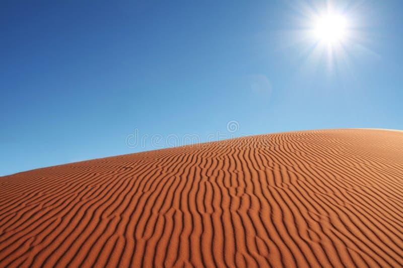 Dune de sable photos libres de droits