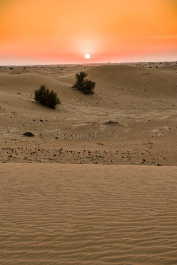 Dune de sable photo stock