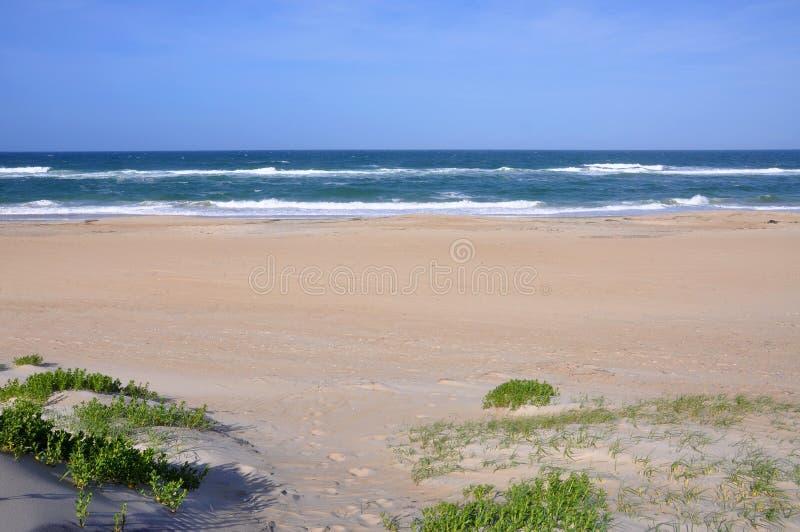 Dune de sable dans le cap Hatteras, la Caroline du Nord image libre de droits
