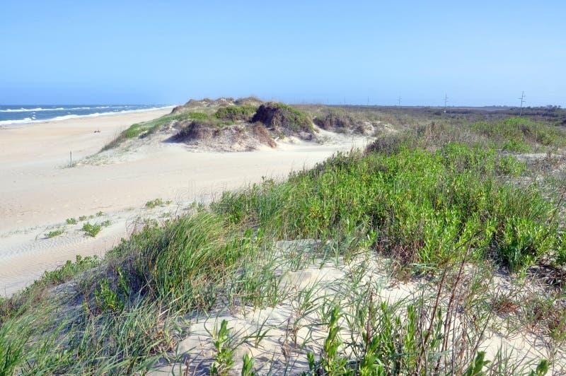 Dune de sable dans le cap Hatteras, la Caroline du Nord image stock