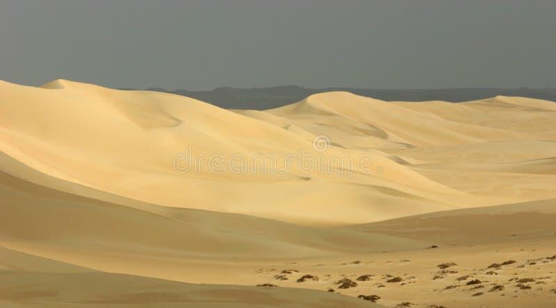 Dune de sable image stock