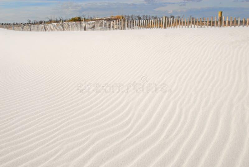 Dune de sable magnifique photo libre de droits
