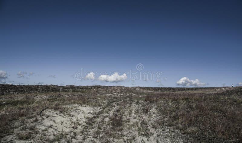 Dune di Nida fotografia stock