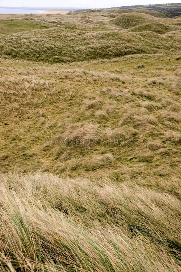 Dune di rotolamento fotografia stock