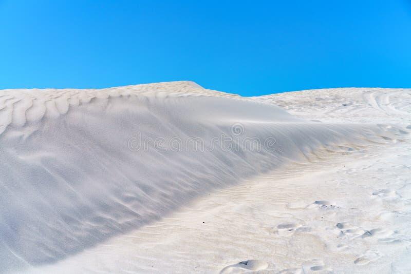 Dune di sabbia bianche di lancelin, Australia occidentale 1 fotografia stock