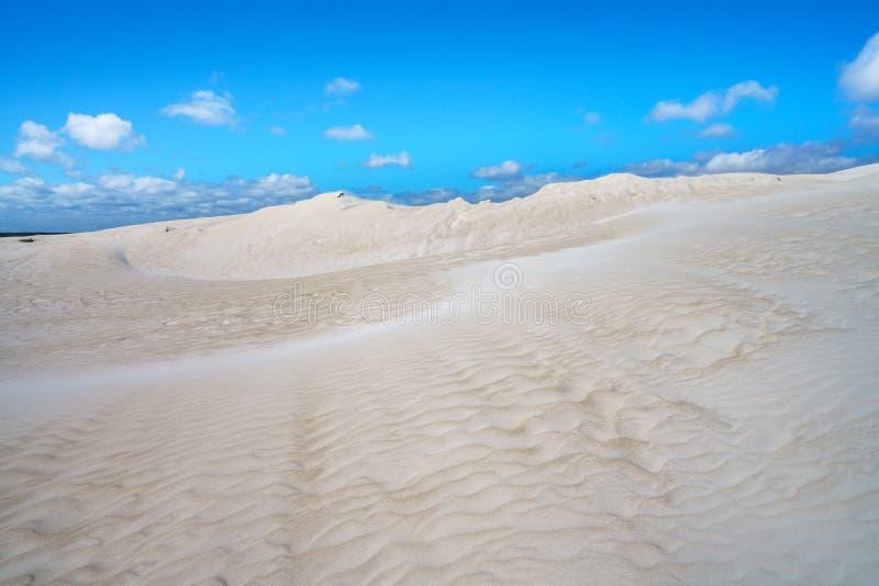 Dune di sabbia bianche di lancelin, Australia occidentale 9 fotografia stock libera da diritti