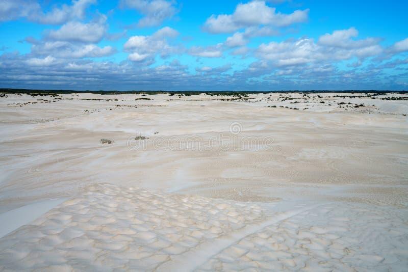 Dune di sabbia bianche di lancelin, Australia occidentale 16 fotografia stock