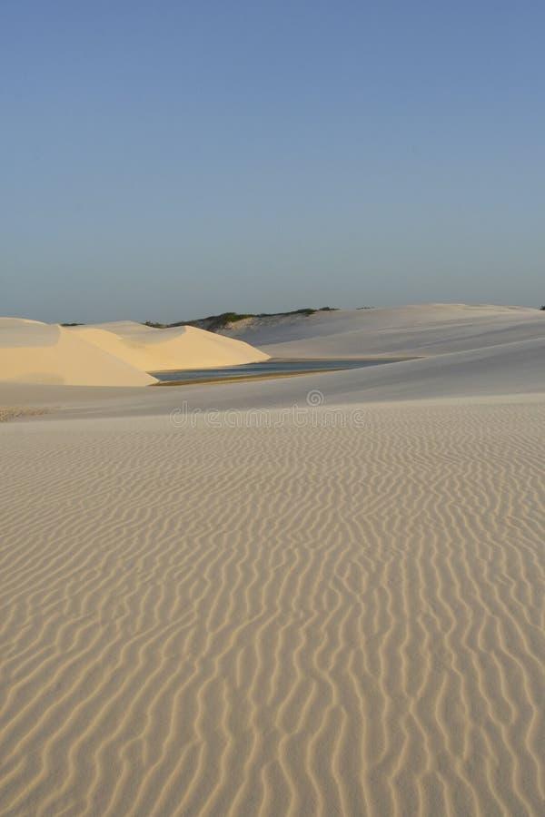 Dune di sabbia con l'oasi fotografie stock