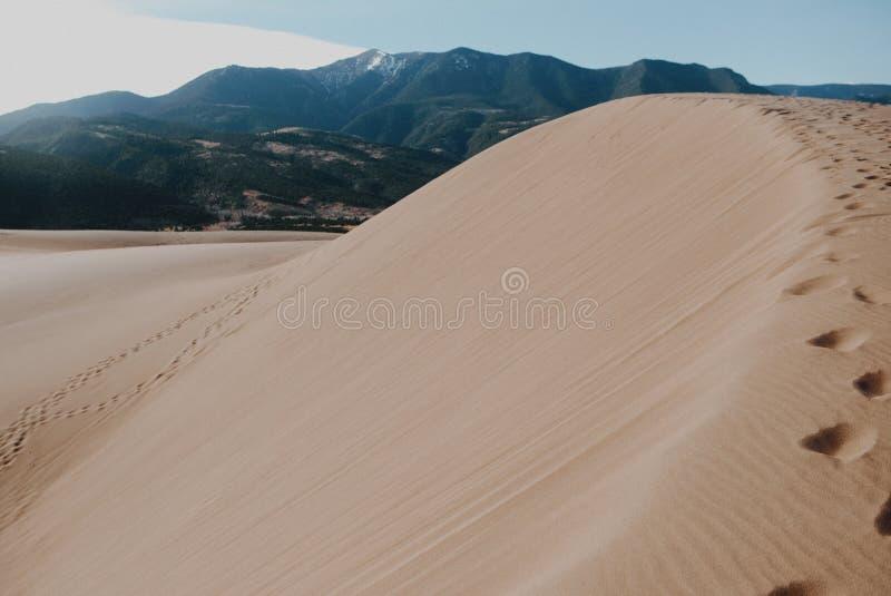 Dune di sabbia con una vista immagine stock libera da diritti