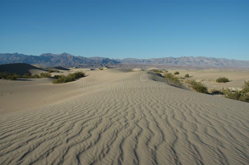 Dune di sabbia del Death Valley N.P. immagine stock libera da diritti