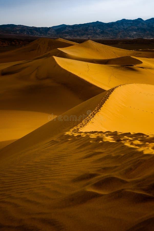 Dune di sabbia del Mesquite ad alba - parco nazionale di Death Valley fotografie stock libere da diritti