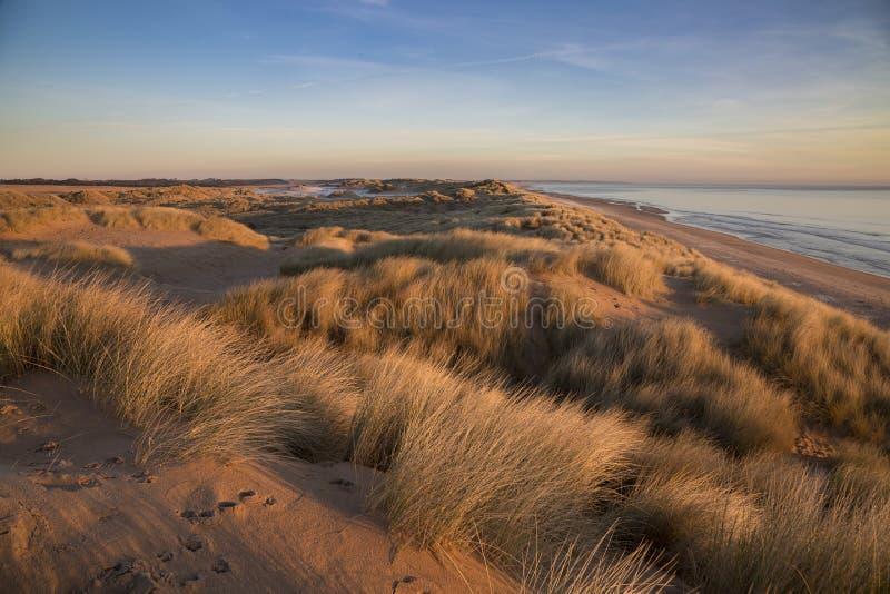 Dune di sabbia della spiaggia Aberdeenshire di Balmedie immagine stock libera da diritti