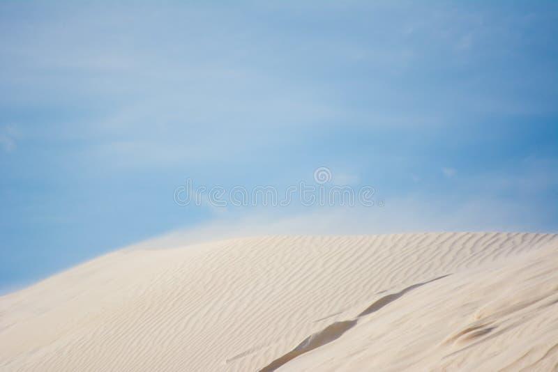 Dune di sabbia della spiaggia con ventoso e cielo blu immagini stock libere da diritti
