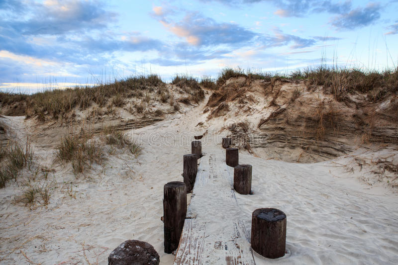 Dune di sabbia della spiaggia di follia Charleston South Carolina fotografie stock